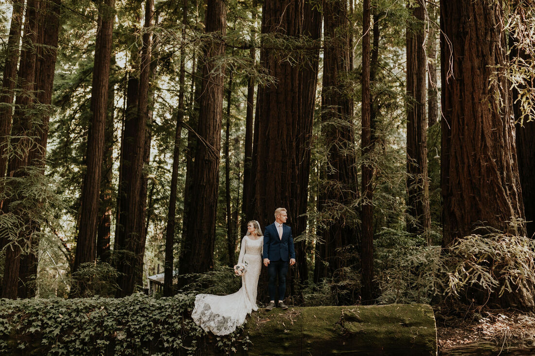 Glen Oaks Big Sur Elopement Photographer